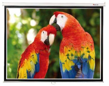 Экран для проектора настенный 203*203 SGM-1104 Redleaf